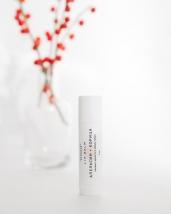 Бальзам для губ АПЕЛЬСИН+КОРИЦА, 5 мл Термальный источник